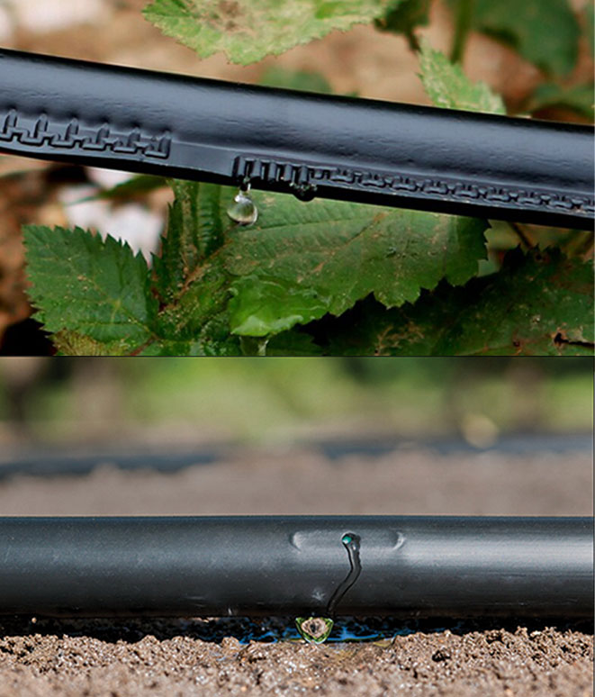Comparison of type tape with seam and seam in drip irrigation
